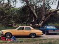 Buick Skylark 1975 года