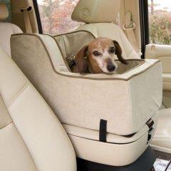 Размещение домашних животных во внедорожнике - простор для ваших питомцев