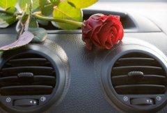 Как удалить неприятные запахи в салоне автомобиля