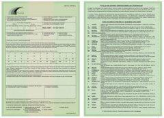 Страховка авто «зеленая карта» – особенности оформления и получения страховых выплат